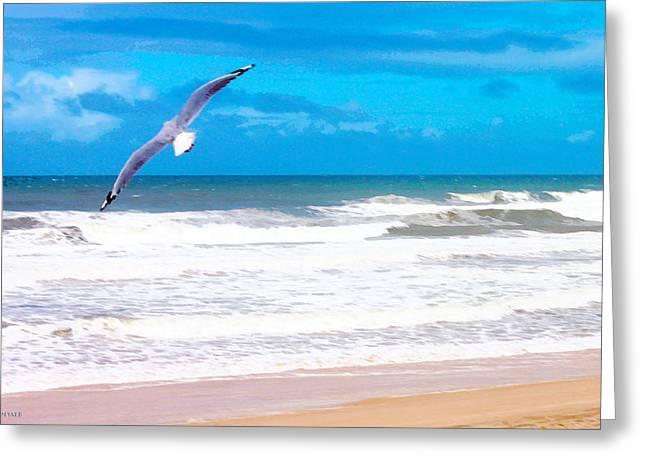 Flying Seagull Pyrography Greeting Cards - Free Bird Greeting Card by Susan Vineyard