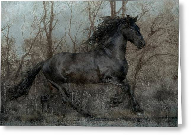 Composite Art Greeting Cards - Free II Greeting Card by Jean Hildebrant
