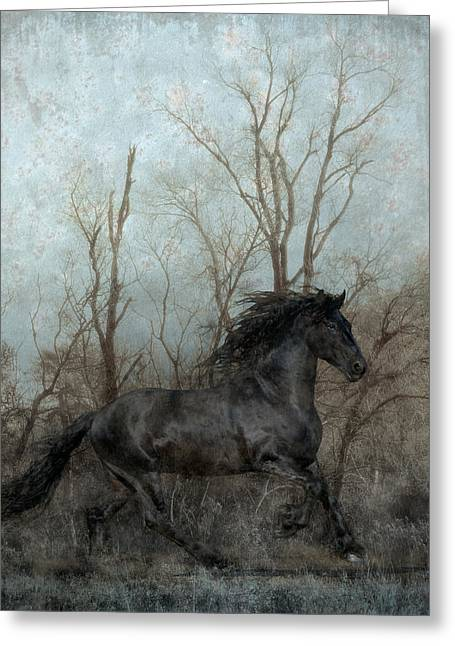 Composite Art Greeting Cards - Free Greeting Card by Jean Hildebrant