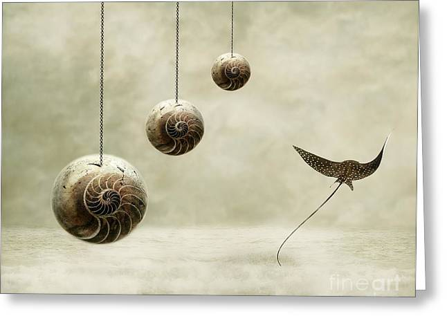 Shell Digital Greeting Cards - Free Greeting Card by Photodream Art