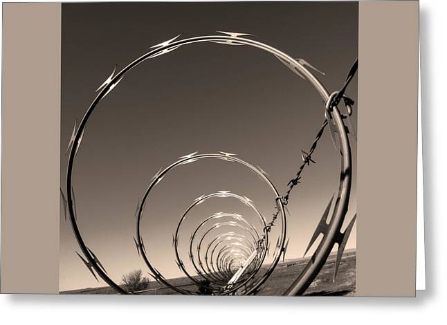 Barbed Wire Fences Greeting Cards - Freedom Greeting Card by Don Spenner