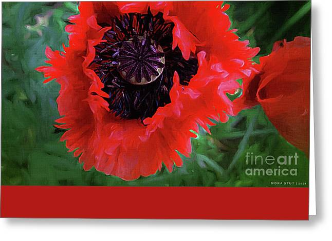 Freedom Greeting Card by Mona Stut