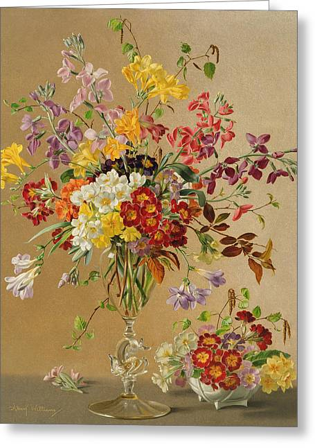 Freesias And Primroses Greeting Card by Albert Williams