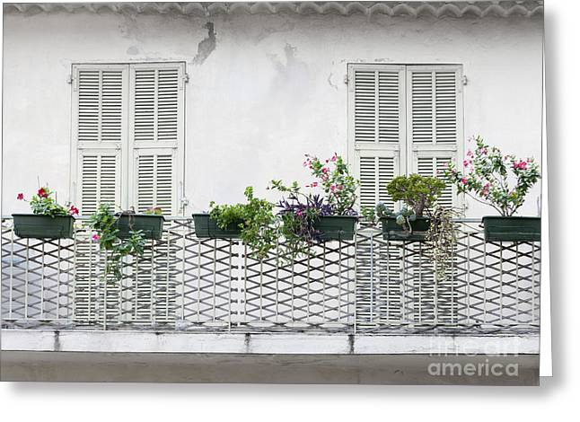 Flower Boxes Greeting Cards - French balcony with shutters Greeting Card by Elena Elisseeva