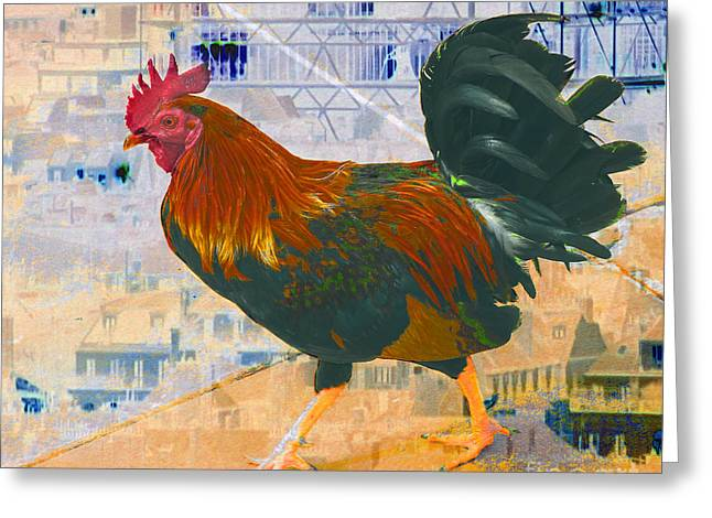 Abstract Digital Photographs Greeting Cards - French Cock Greeting Card by Lew Lautin