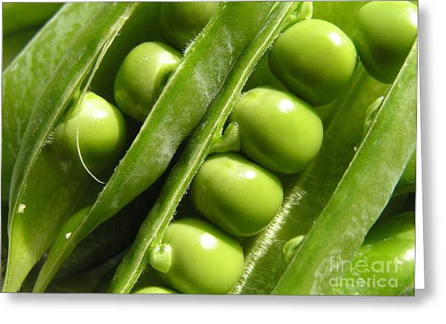 Organic Greeting Cards - Fresh green peas in the sunlight Greeting Card by Kerstin Ivarsson