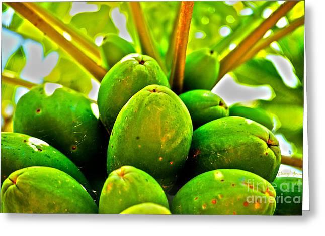 Papayas Greeting Cards - Fresh Papayas Greeting Card by Cheryl Young