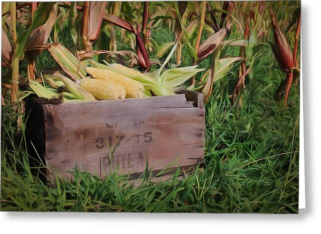 Cropped Mixed Media Greeting Cards - Fresh Picked Corn Greeting Card by Lori Deiter