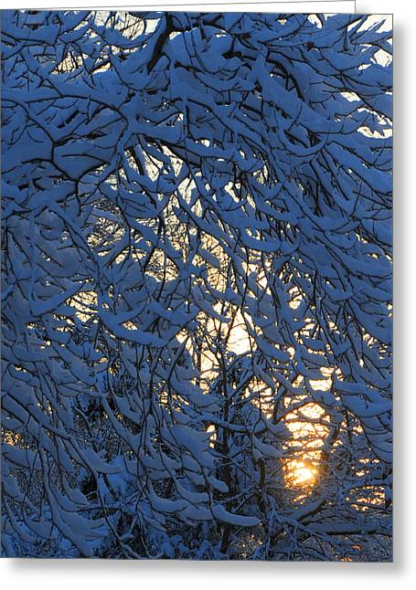 Ridgewood Greeting Cards - Fresh Snow At Sunrise Greeting Card by Dimitri Meimaris