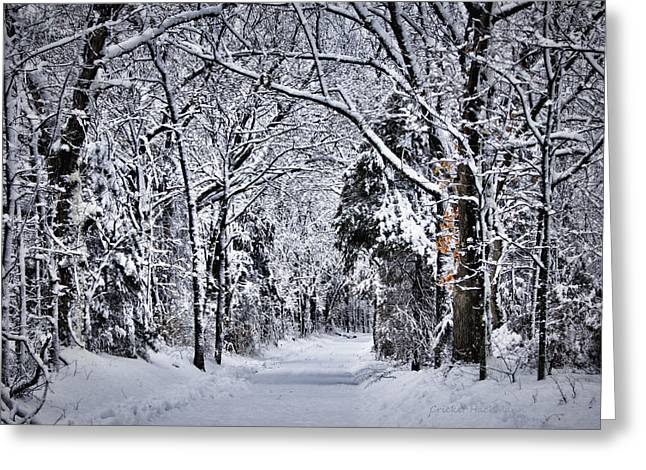 Fresh Snow Greeting Cards - Fresh Snow Greeting Card by Cricket Hackmann