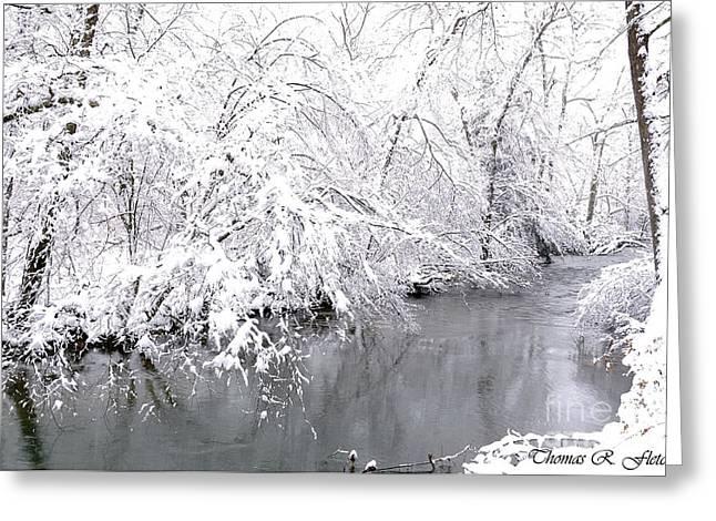 Virginia Snow Greeting Cards - Fresh Snowfall Greeting Card by Thomas R Fletcher