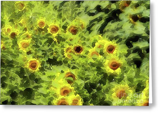 Methune Hively Greeting Cards - Fresh Sunflowers Greeting Card by Methune Hively