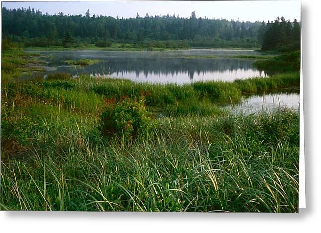 Maine Landscape Digital Greeting Cards - Fresh Water Pond Horizontal Greeting Card by Amanda Kiplinger