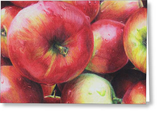 Fresh Food Drawings Greeting Cards - Freshly Picked Greeting Card by Shana Rowe