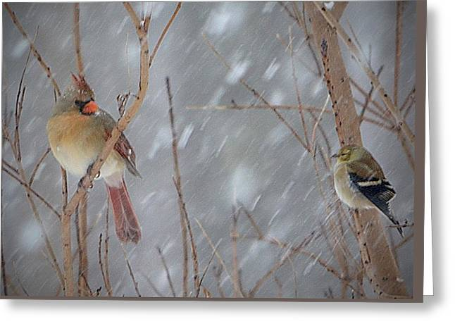 Winter Storm Greeting Cards - Friends In A Storm Greeting Card by Marjorie Tietjen