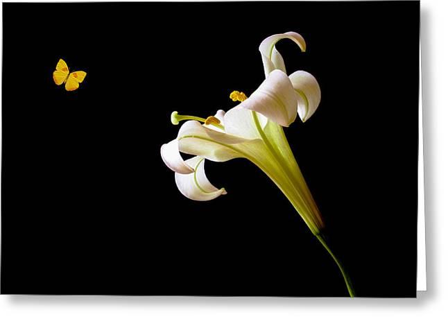 Floral Digital Art Digital Art Greeting Cards - Friends Greeting Card by Marina Kojukhova