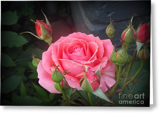 Flower Blossom Greeting Cards - Friendship Rose Greeting Card by Lingfai Leung