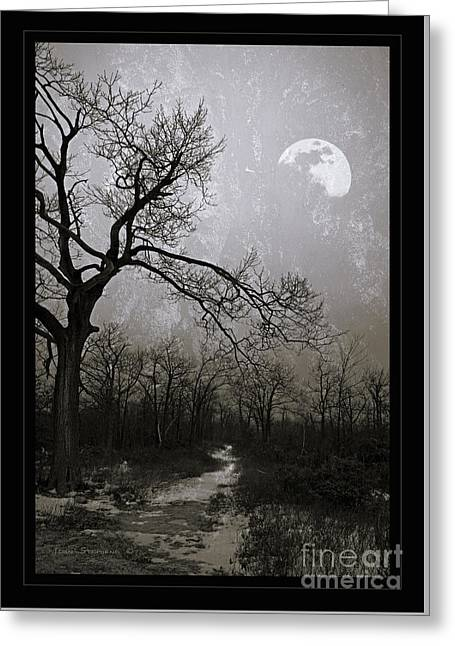 Frigid Moonlit Night Greeting Card by John Stephens