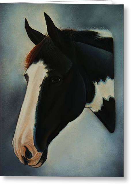 Event Pastels Greeting Cards - Fritz - Paint horse Greeting Card by Lucy Deane