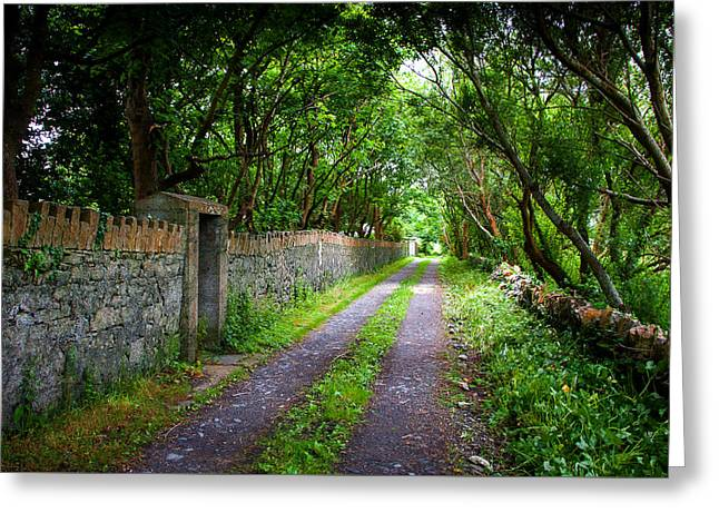 Frogmore Greeting Cards - Frogmore Lane Greeting Card by Mark Callanan