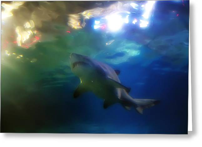 Sharks Digital Art Greeting Cards - From The Depths Greeting Card by Bill Cannon