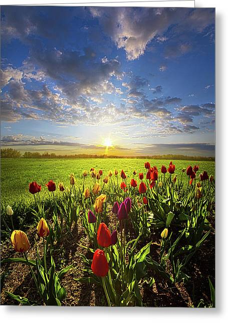 From The Very First Moment Greeting Card by Phil Koch