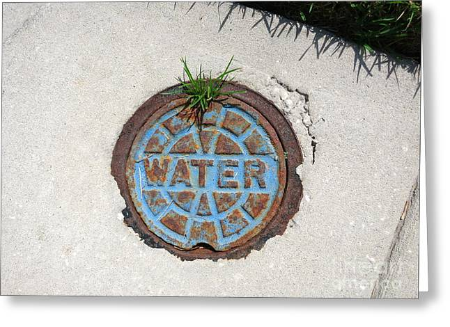 Public Water Supply Greeting Cards - From water - grass grows and iron rusts Greeting Card by Four Stock