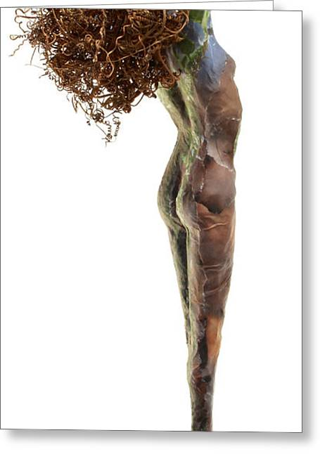 Nudes Sculptures Greeting Cards - Frondescence Greeting Card by Adam Long
