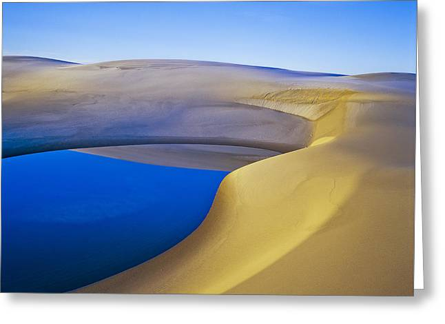 Oregon Dunes National Recreation Area Greeting Cards - Frost and Ephemeral Pool Greeting Card by Robert Potts