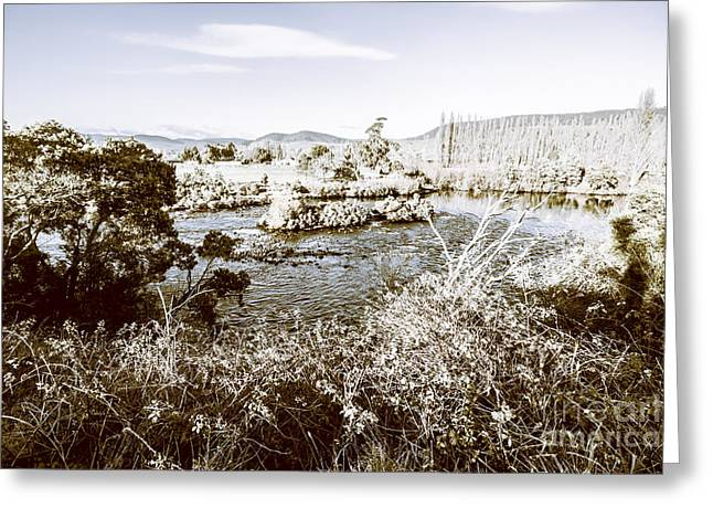 Frost Covered River Greeting Card by Jorgo Photography - Wall Art Gallery