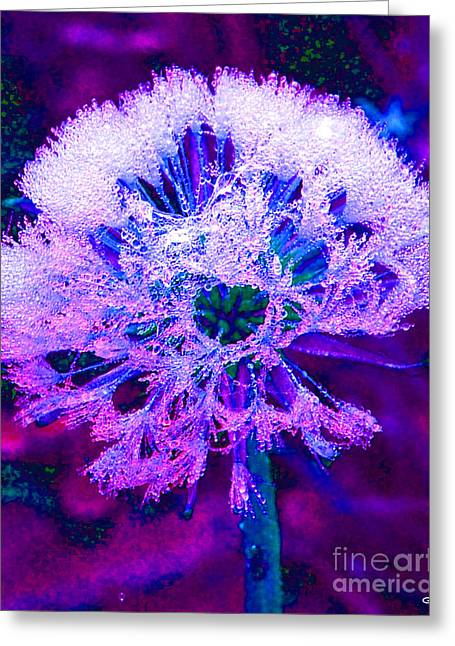 Digitally Manipulated Greeting Cards - Frosted Greeting Card by Nick Gustafson
