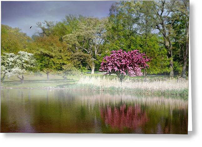 Pond In Park Greeting Cards - Spring Frosting Greeting Card by Diana Angstadt