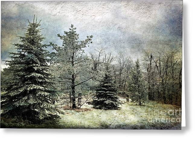 Snowy Day Greeting Cards - Frosty Greeting Card by Lois Bryan