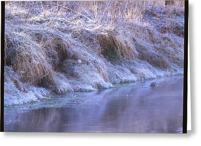 Joni Greeting Cards - Frosty Morning in North Texas Greeting Card by Greg Kopriva