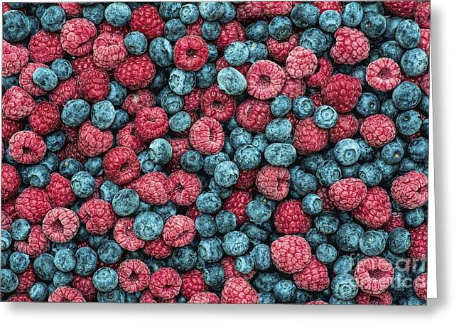 Frozen Berries Greeting Card by Tim Gainey