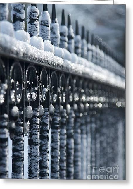 Frozen Fence 2 Greeting Card by Hideaki Sakurai