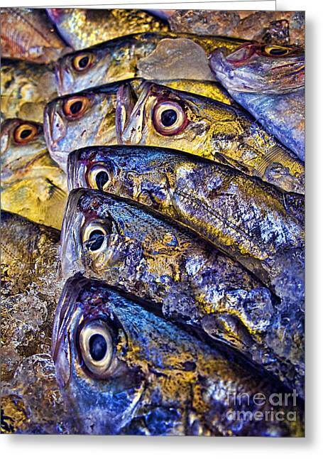 Fulfilled Greeting Cards - Frozen Fish Greeting Card by Ray Laskowitz - Printscapes