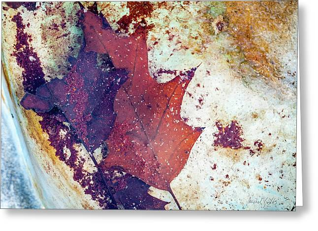 Impressionist Greeting Cards - Frozen in Antique Wash Bowl Greeting Card by Michel Godts