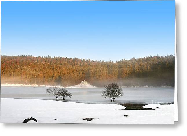 Rolling Hills Of France Greeting Cards - Frozen lake with small white house with autumn tree colored Greeting Card by Gregory DUBUS