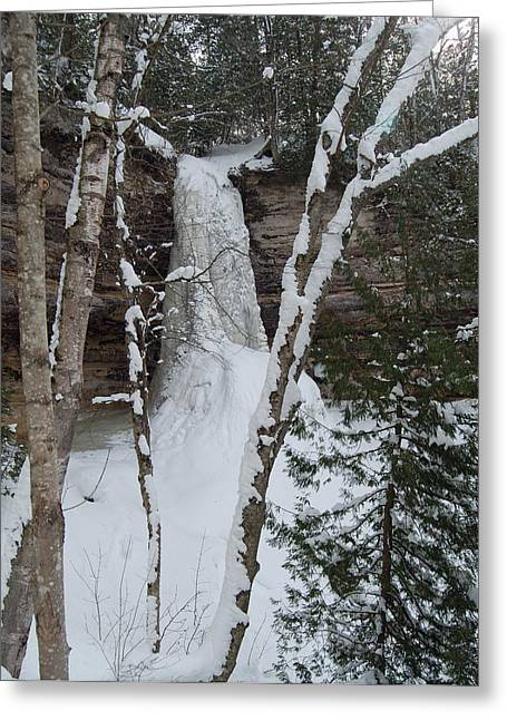 Snow-covered Landscape Greeting Cards - Frozen Greeting Card by Michael Peychich