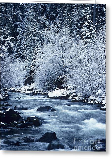 Beautiful Creek Greeting Cards - Frozen Salt Creek Greeting Card by Greg Vaughn - Printscapes