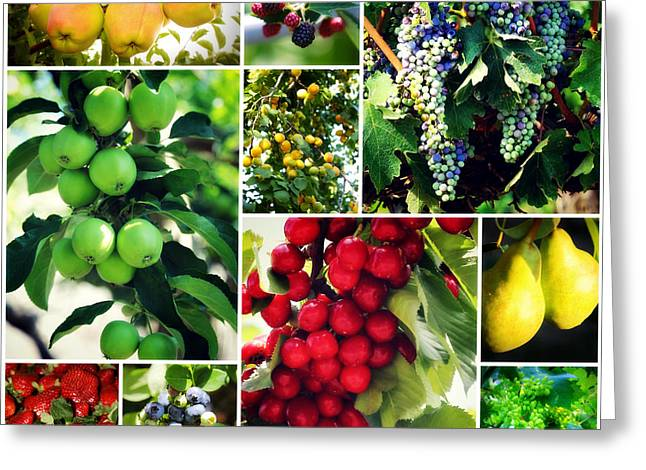 Fruit Collage Greeting Card by Carol Groenen