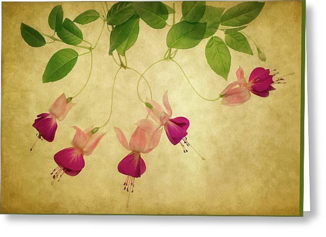 Fuchsia #1 Greeting Card by Rebecca Cozart