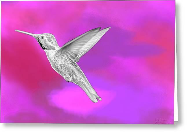 Fuchsia Jewel Greeting Card by David Millenheft