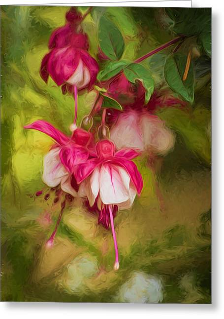 Evening Light - Digital Painting Greeting Card by Marilyn Wilson