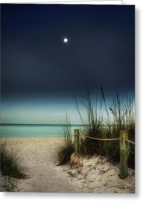 Full Moon Beach Greeting Card by Greg Mimbs
