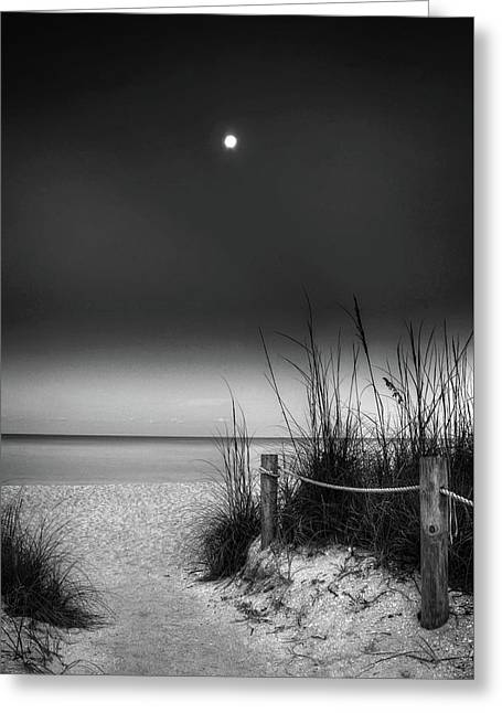 Full Moon Beach In Black And White Greeting Card by Greg Mimbs