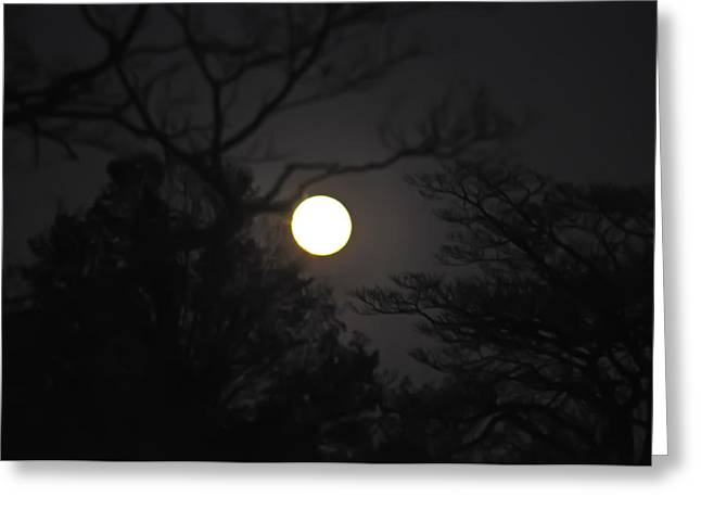 Scarey Greeting Cards - Full Moon Greeting Card by Bill Cannon