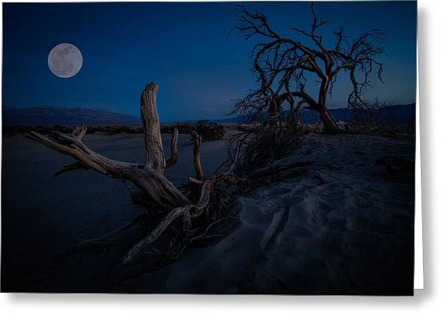 Sand Dunes Pyrography Greeting Cards - Full Moon in Death Valley Greeting Card by Rick Strobaugh