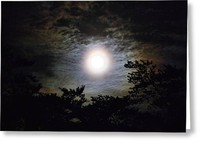 Moonrise Greeting Cards - Full Moon Rising in the Trees Greeting Card by Kathryn Meyer